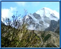 Uttaranchal Travels & Tours